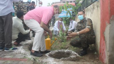 Tree plantation by CRPF