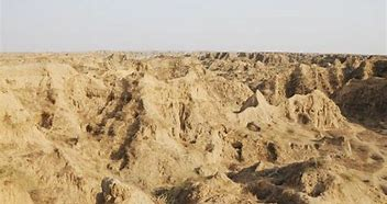Chambal-bihad to be brought under Agriculture