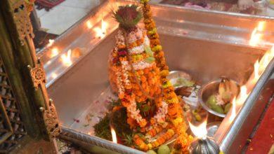 Live Darshan of Vishwanath through LED-screens