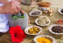 Ministry of AYUSH and AIIMS decide to work together to set up a Department of Integrative Medicine