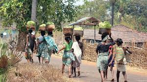 Trifed to launch Tech for Tribals in Chhattisgarh