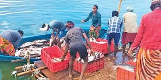 61 days ban imposed on marine fishing starting today in Andhra Pradesh